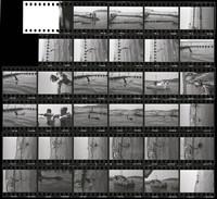 "1965 Orca Whale ""Namu"" (Negative Set #3 of 3)"