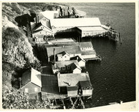 Pacific American Fisheries cannery at Squaw Harbor on Shumagin Island, Alaska.