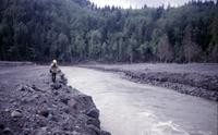 Confluence of Green River (right in this view) and North Fork Toutle River, showing mudflow.