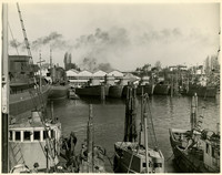 Eight navy vessels are moored among fishing tenders in the inner harbor of Wrang shipyards, Bellingham, WA