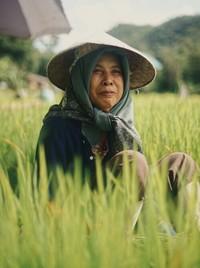Rice Farmer