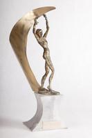 Cross-Country Running (Women's) Trophy: NCWSA AIAW Region 9, 1980