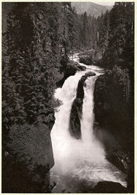 Full view of Nooksack Falls amid forested slopes with small bridge slightly upriver