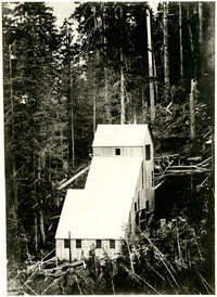 Boundary-Red Gold Mine structure on forested mountainside