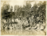 Rocky face of shoreline topped with trees in cove at Clark's Point, WA
