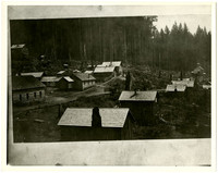 Cokedale, WA, mining camp cabins in hillside clearing with schoolhouse in background