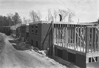 1970 Birnam Wood: Construction
