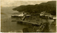 Looking down on small harbor village with raised boardwalks, piers with warehouses, surrounded by forested mountains