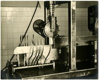 Pacific American Fisheries' Research Department - unidentified machine, possibly used for butchering fish