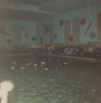 Blue Barnacles Swim Club, Star Formation
