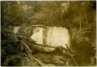 Rustic viewing platform at one of Whatcom Creek's falls.