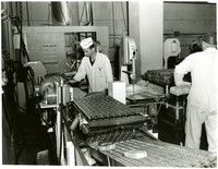 Man in lab coat and cap inspects conveyor belt in cannery