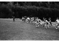 1982 NAIA District I Cross Country Championships