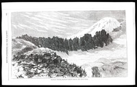 Mountaineering on the Pacific (copy of page 11 of article from Harper's New Monthly Magazine)