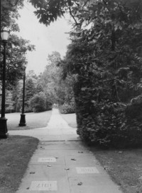 1960 Memory Walk