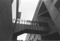 1988 Environmental Studies Buildilng: Skybridge to Arntzen Hall