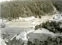 1950 Aerial View Of Campus School