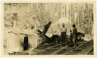 Summit Cut - three men stand with steam-powered shovel next to rail tracks in forest