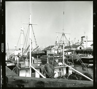 View from pier looking out over several docked fishing boats with a large steamer ship in the background.