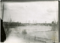 Flooding Nooksack river overtaking fences, trees, with buldings of Ferndale, WA, in background