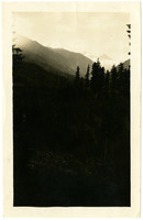 A view across a wooded valley toward the Twin Sisters range near Mount Baker.