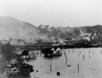 1903 View of Campus from Waterfront