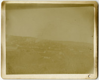 Rooftop view of unidentified town with brush in foreground