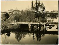 An overgrown, derelict bridge with no railing spans Whatcom Creek