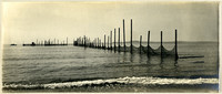 Shoreline view of row of fishtraps extending toward horizon