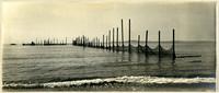 Shoreline view of row of fishtraps extending toward horizon