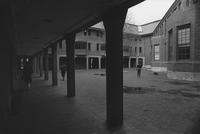 1980 Miller Hall: Courtyard