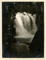 Downstream view of water falls in forest