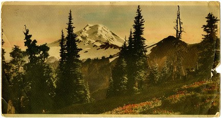 Sepia toned photo of Mount Baker with hand painted flowers and trees